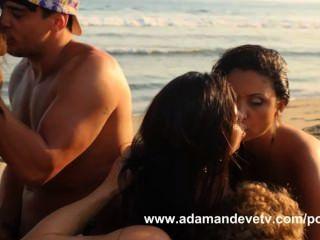Wild Beach Orgy