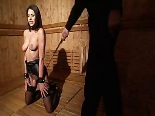 Slave Training - Zafira