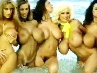 Big Titty Heaven Is On The Beach