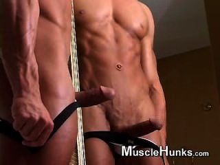 Bodybuildermusclesolo1