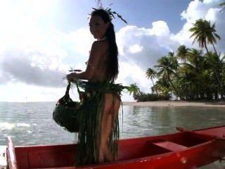 Island Paradise 2