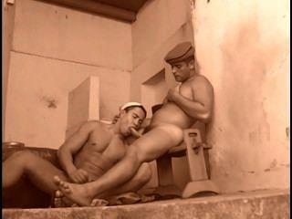 Gay Arabian