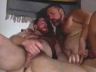 These Bears Like To Masturbate
