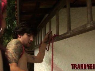 Hot Kinky Tranny Dom Gets Sucked