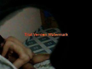 Vietnamsex