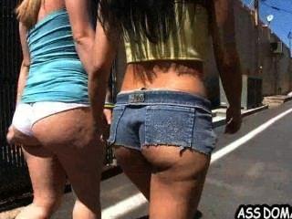 Ass Pounding101 Briella Bounce And Abella Anderson.1