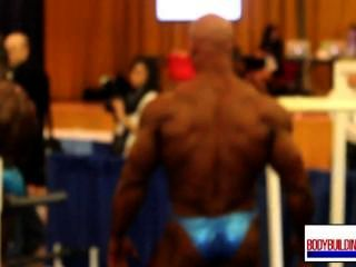 Musclebull Ben Blue Shiny Posers Backstage 1/2