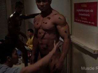 Asian Musclebulls