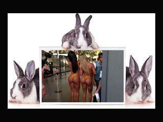 Naked Ass Art Gallery 15 By Mark Heffron