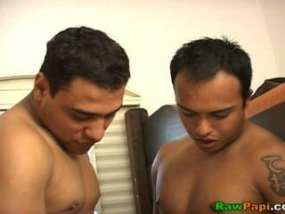 Raw Papi: Hot Latin Bears