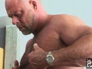 Muscly bear rams asshole